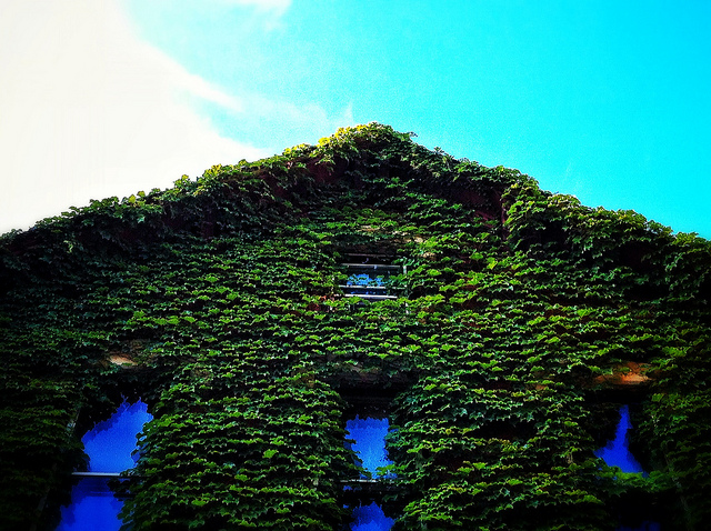 Green Homes Aren't Necessarily More Expensive